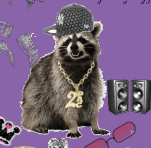 Bling Raccoon - Get Down Witchoo Bad Self